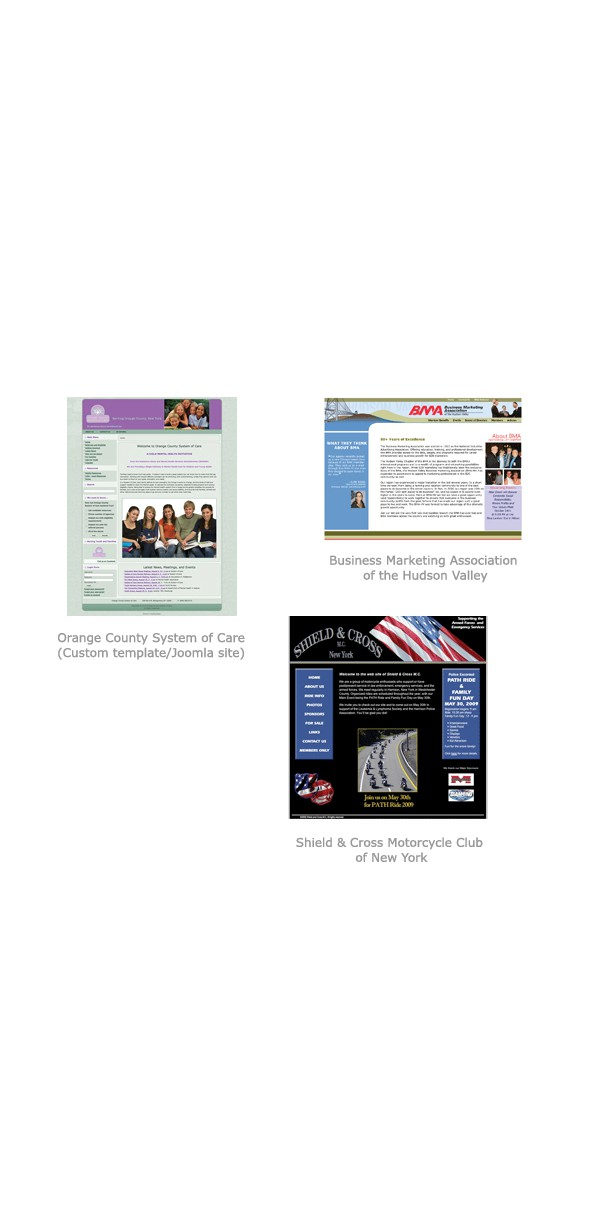 Past Website Designs